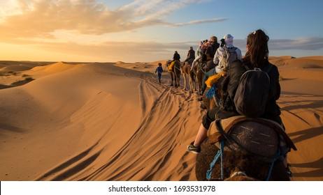 Desert camel trek with a sunset and a berber