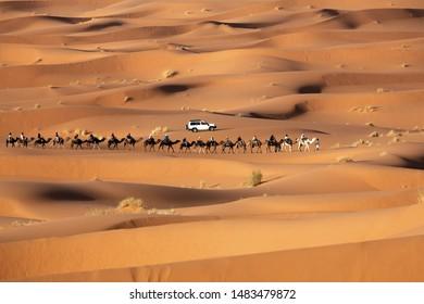 Desert Caravan Erg Chebbi Morocco