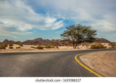 desert country side rural road with dry scenic landscape dunes environment and lonely tree