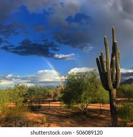 Desert Double rainbow in the Sonoran desert