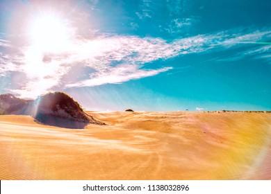 Desert Dunes - Maracajau - Natal - Rio Grande do Norte . Brazil