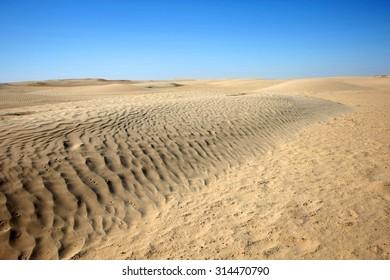 Desert dunes of Sahara at the gateway to the Sahara near the town Douz.