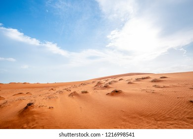 The desert has a very hot climate.