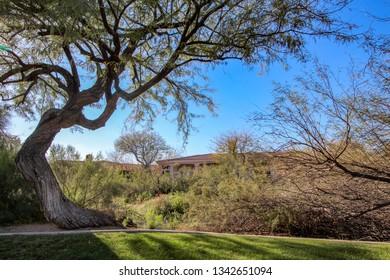 Desert Homes in Scottsdale near a park