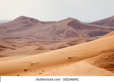Desert landscape of Arabian peninsula