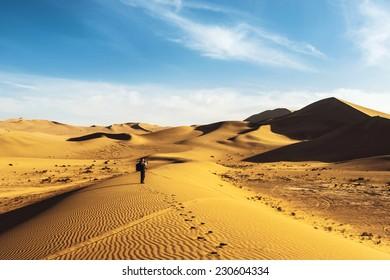 desert landscape with blue sky. Dunes background