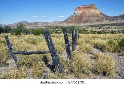 Desert landscape depicting Cerro Castellan mountain at Big Bend National Park in Texas.