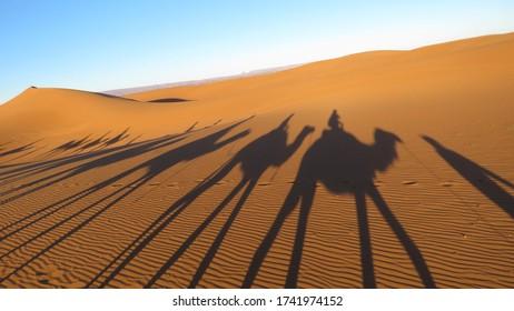 Desert landscape drawing in MOROCCO