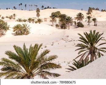 Desert landscape of dunes in Douz,Tunisia