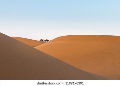 desert landscape at dusk, far away camels and beautiful sand dunes