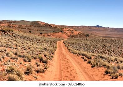Desert landscape in the NamibRand Nature Reserve in Namibia.
