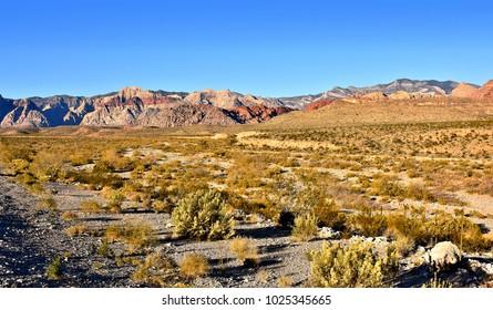 Desert landscape. Red Rock Canyon National Conservation Area. Nevada.