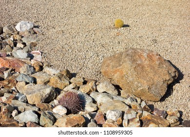 Desert landscaping with native drought tolerant cacti and natural boulder and rocks in Phoenix, Arizona