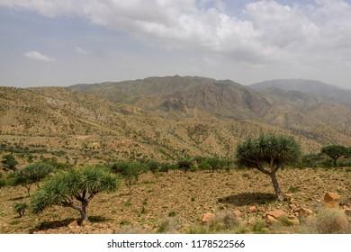 Desert lanscape in the Tigray region of Ethiopia, near to Makalle