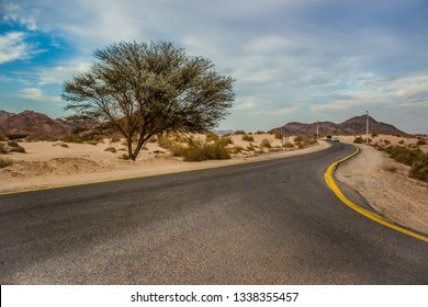 desert Middle East dry landscape rural wilderness environment with empty country side car asphalt road and lonely tree