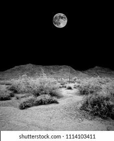 Desert moon over the southwestern USA Sonora desert and San Tan mountains
