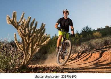 Desert Mountain Biker Next to Cactus