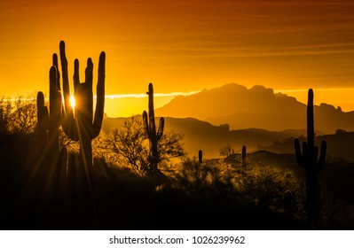 Desert Mountain Sunrise - Mighty saguaros and mountains are silhouetted in this dramatic Arizona sunrise.  Backlighting adds a mystical effect to this image.