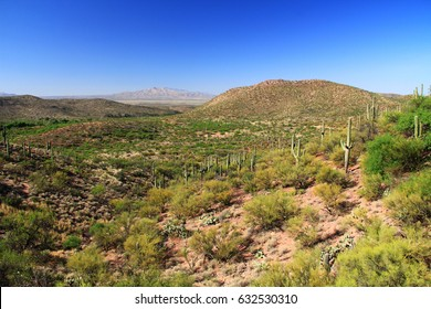 Desert Mountain view as seen from the gift shop and cave entrance of Colossal Cave Mountain Park in Vail, Arizona, USA, near Tucson in the Sonoran Desert.