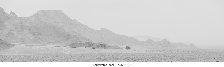 desert with mountains and dramatic sky at the background