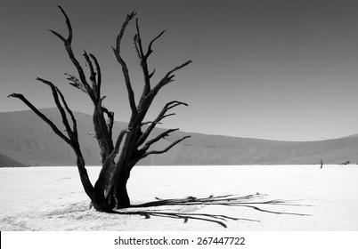 Desert, Namibia, Death valley, art of nature