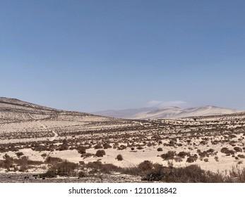 Desert nature background