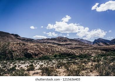 Desert plants at The Virgin River Gorge, located between St. George, Utah, and Beaver Dam, Arizona, Colorado Plateau, desert landscap