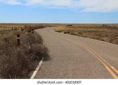 Desert Road With Collected Tumbleweeds