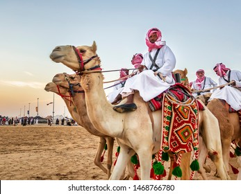 Desert  safari camel ride festival in Abqaiq Dammam Saudi Arabia.This Photo was taken Month of January 4th Year 2019.