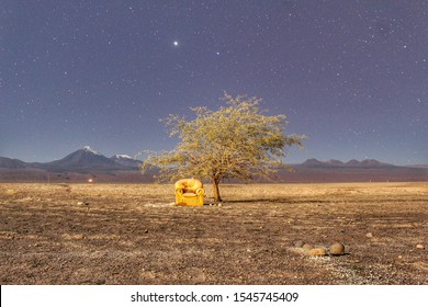 In the desert of San pedro de Atacama Chile
