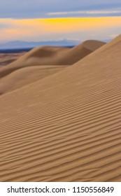 Desert Sand Ripples