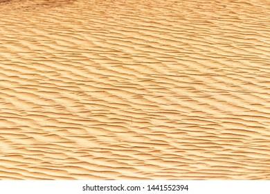 desert sand, taken on abudhabi, uae.