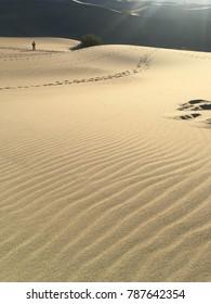 Desert sand tracks