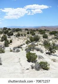 Desert Scene with Blue Sky in Nevada