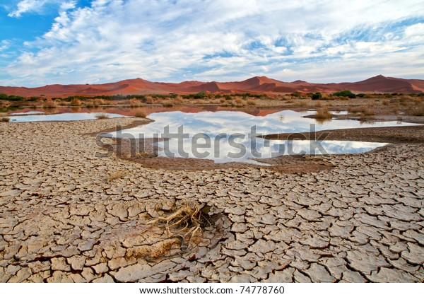 Desert scene with water in Namibia