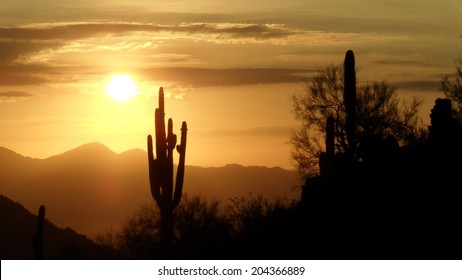 Desert sunrise with horizon silhouette and clouds