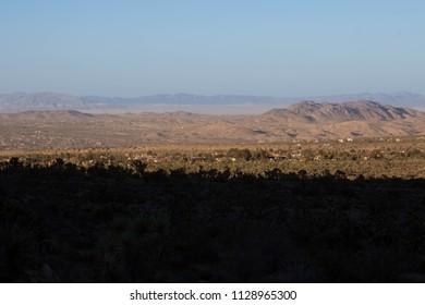Desert Sunset Joshua Tree National Park - Southwestern Landscape - California