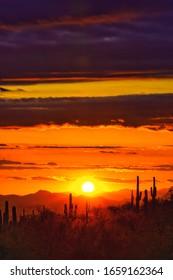 Desert sunset over saguaro Cactus silhouette
