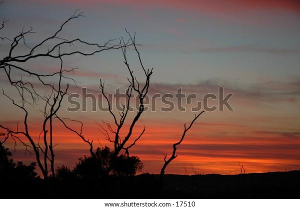 Desert Sunset wide