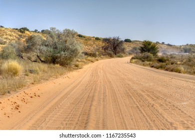 DESERT TRAIL showing typical scenery of the western Kgalagadi Transfrontier Park, Kalahari  desert, South Africa