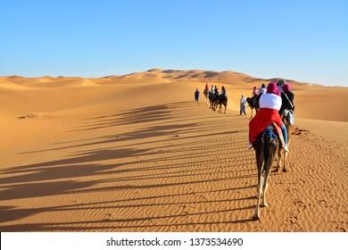 desert, the Western Sahara, Morocco