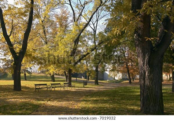 deserted autumn park