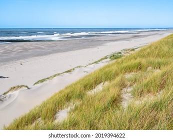 Deserted beach, breakwaters and dunes at North Sea coast of West Frisian island Vlieland, Friesland, Netherlands