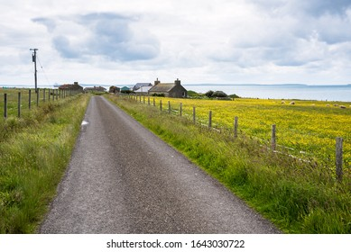 Deserted country road running between grassy fenced fields where there are sheep grazing and to a small coastal village. An anchored cargo ship in visible in background. Orkney Island, Scotland, UK.
