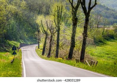 Deserted Hillside Road on a Sunny Spring Day