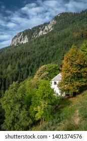Deserted house in deep forest under mountain Veliki Rogatec in Kamnik- Savinja Alps, Slovenia