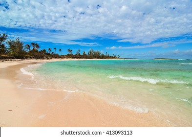 Deserted palm beach on Eleuthera (Bahamas)