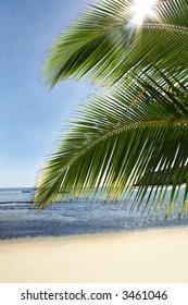 deserted sandy beach