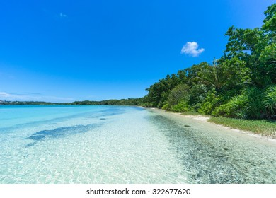 Deserted tropical beach along jungle with clear turquoise water and blue sky, Ishigaki Island of the Yaeyama Islands, Okinawa, Japan