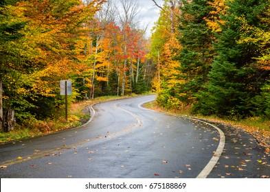 Deserted Winding Forest Road on a Rainy Autumn Day. Adirondacks, NY.